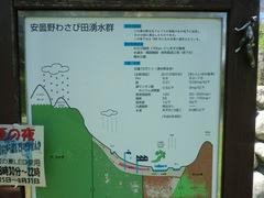 2011.8.29.湧水公園4.JPG