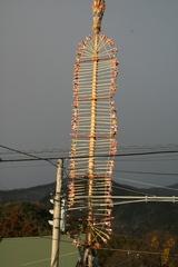 2012.01.02.24.JPG