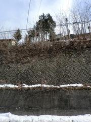 2012.01.13.11.JPG