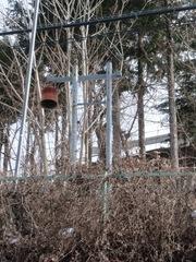 2012.01.13.12.JPG