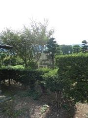 2012.07.27.1.JPG