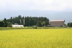 2013.08.25.kumano4.JPG