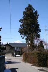 2014.03.12.8.JPG