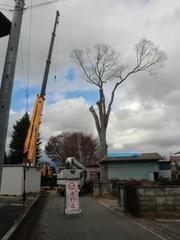 2011.12.13.1.JPG