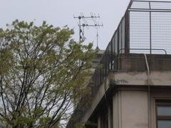 2012.04.15.5.JPG